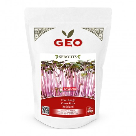 Photo Chou Rouge - Graines à germer bio - 300g Geo